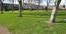 Plæne på kirkegården